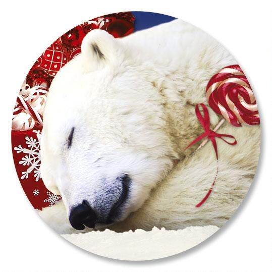 Polar Bear Christmas Envelope Seals