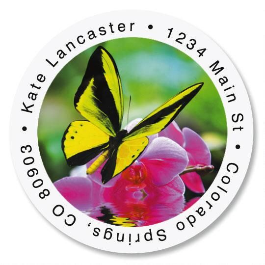 Milkweed Butterfly Round Address Labels