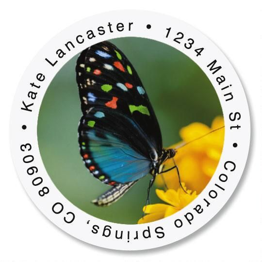 Dotted Butterfly Round Address Labels