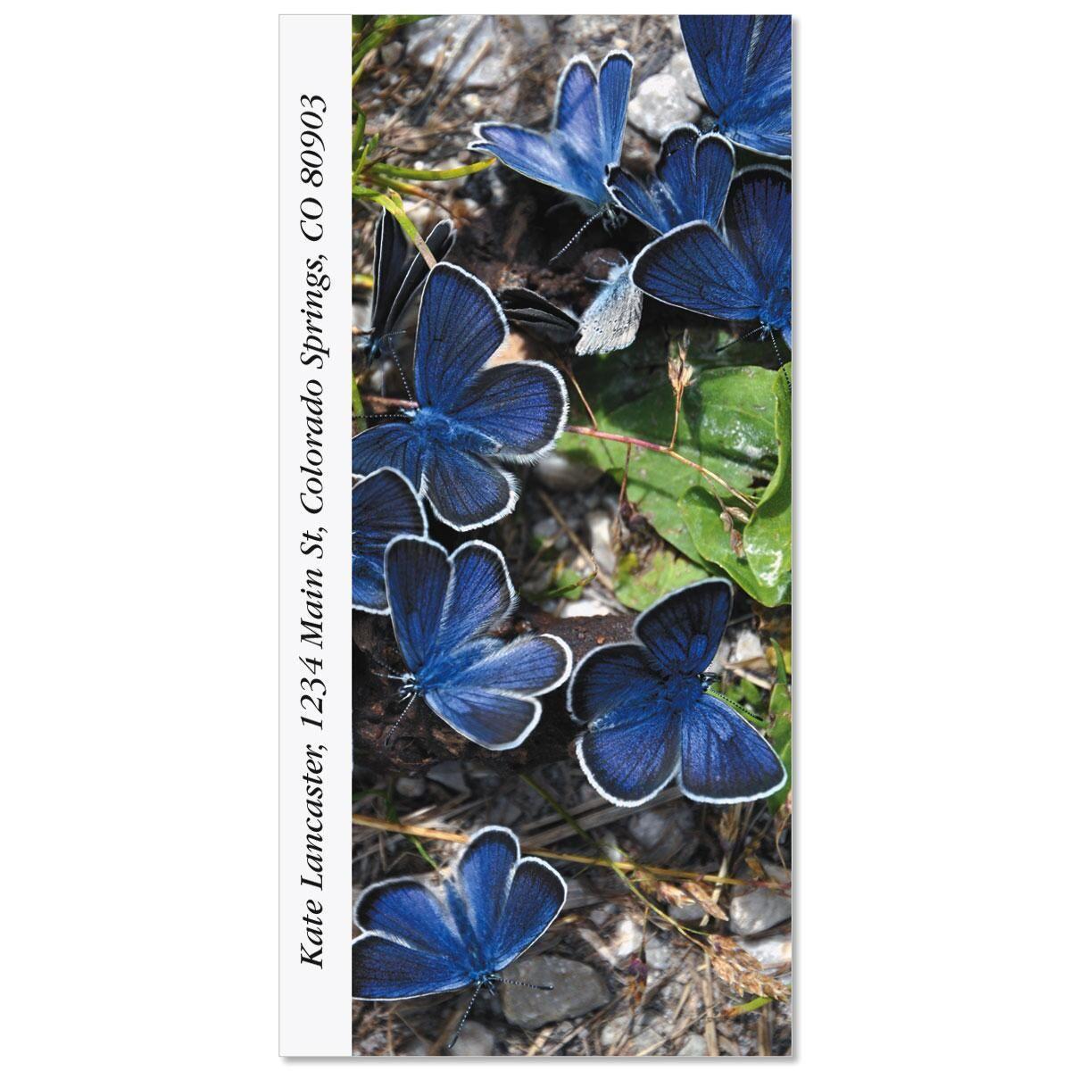 Blue Copper Butterfly Oversized Return Address Labels