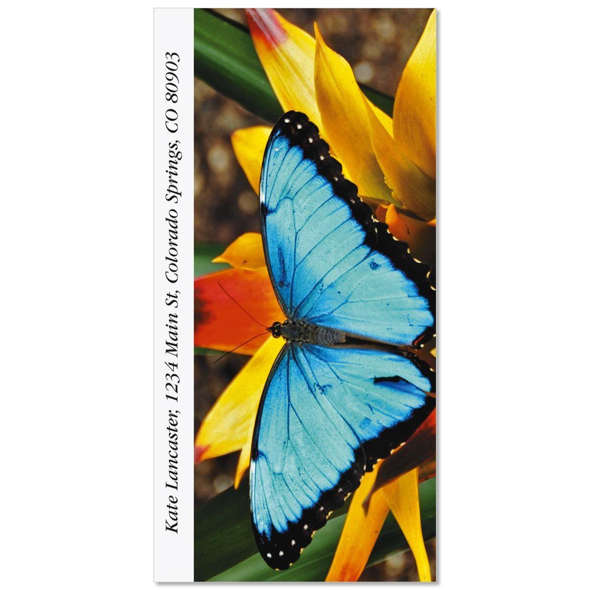 Morpho Blue Butterfly Oversized Return Address Labels