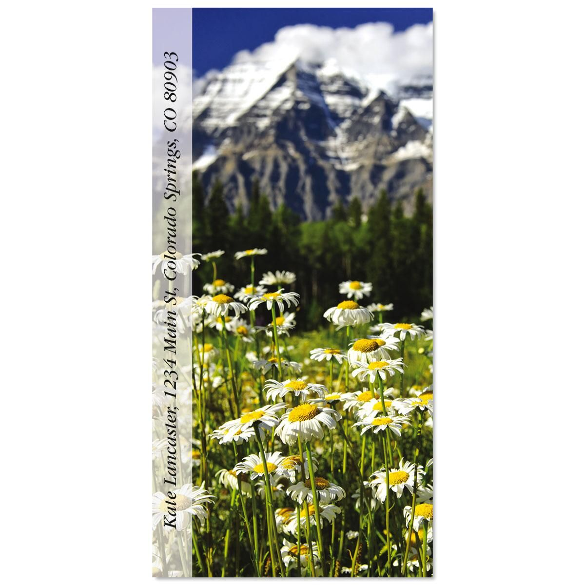 Mount Robson Daisies Oversized Address Labels