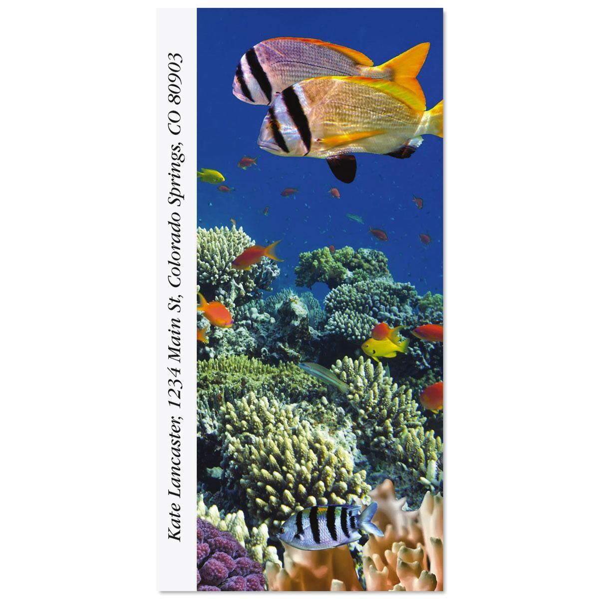 Vivid Coral Reef Oversized Address Labels