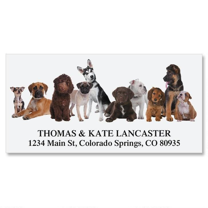 Bow Wow Deluxe Return Address Labels