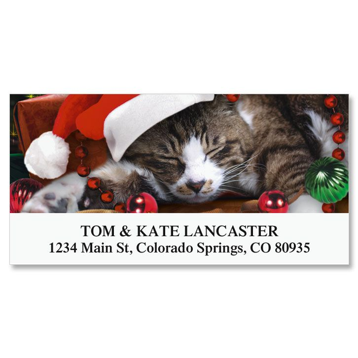 Christmas Cat Deluxe Return Address Labels