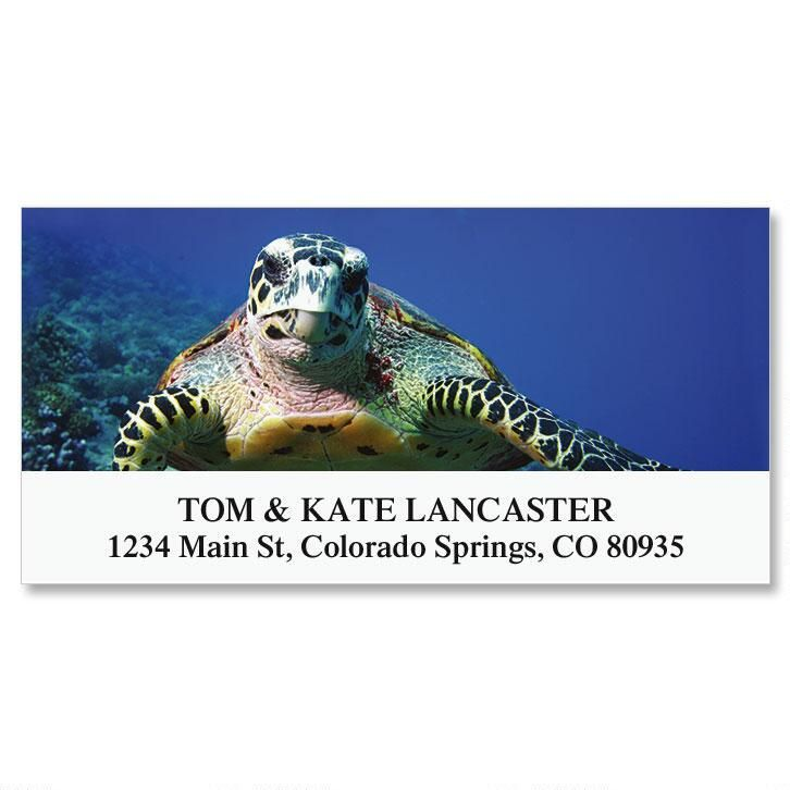 Sea Turtle Deluxe Return Address Labels