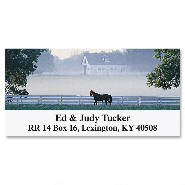 Morning Mist  Deluxe Return Address Labels
