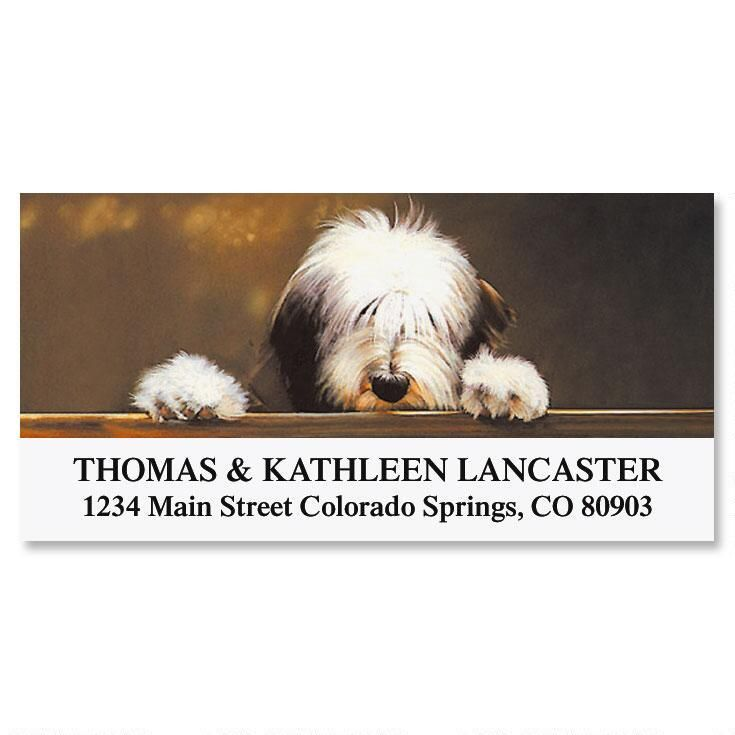 Bearded Collie  Deluxe Address Labels
