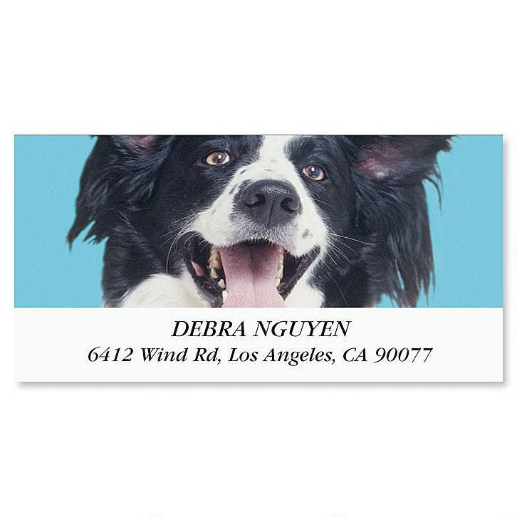 I Love My Black & White Mutt Deluxe Address Labels