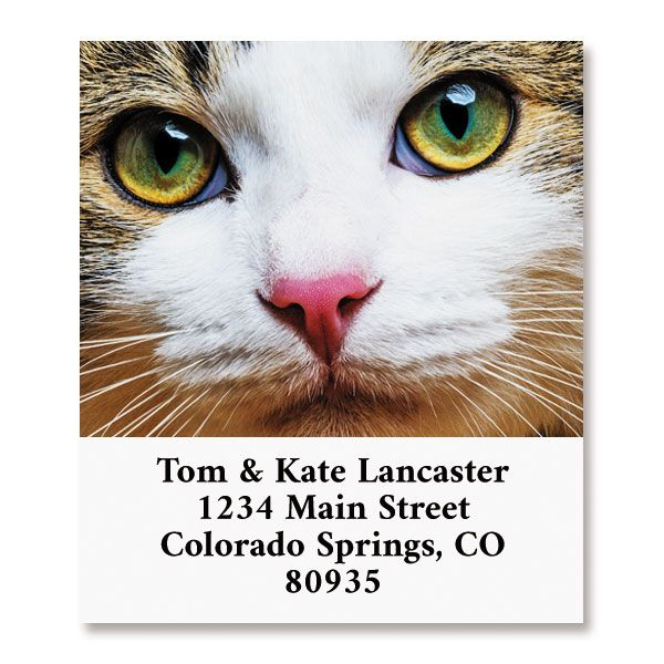Cat Face Select Return Address Labels