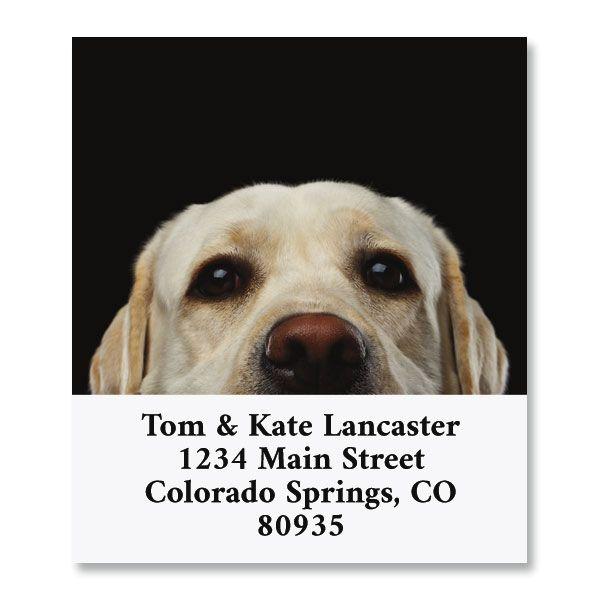 Best Friend Select Return Address Labels