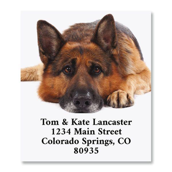 Dog Daze Select Return Address Labels