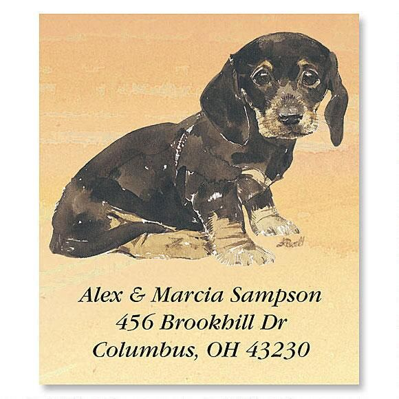 Dachshund Puppies  Select Return Address Labels