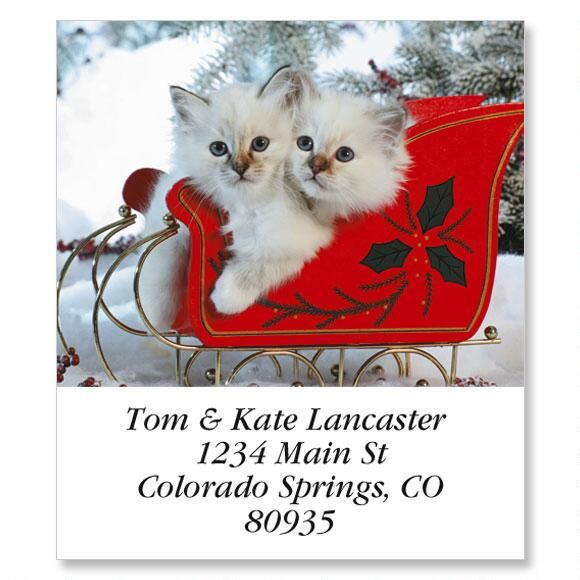 Kitty Sleigh Select Return Address Labels