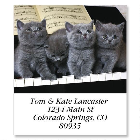 Grey Tunes Select Return Address Labels