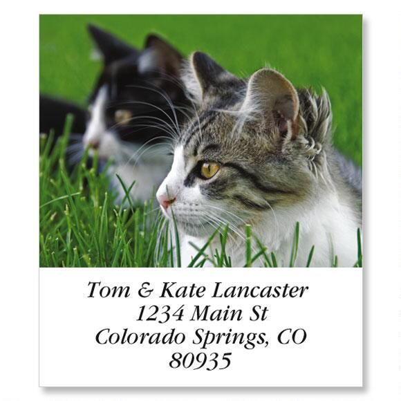 Double Vision Select Return Address Labels
