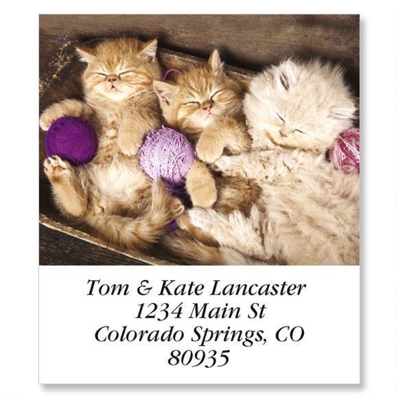 3 Little Kittens Select Return Address Labels