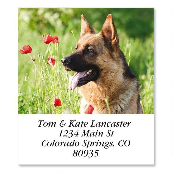 German Shepherd and Poppy Select Return Address Labels