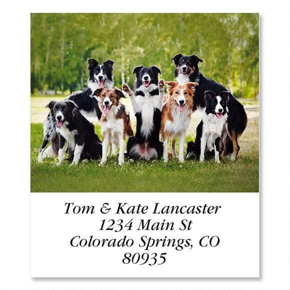 Happy Dogs  Select Address Labels