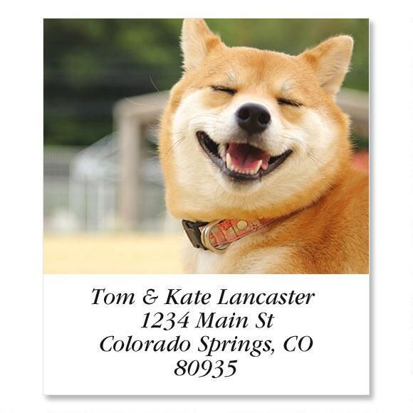 So Fine  Select Return Address Labels