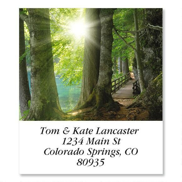 Sun Through Trees  Select Address Labels