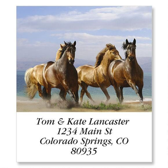 Horse Run Select Address Labels