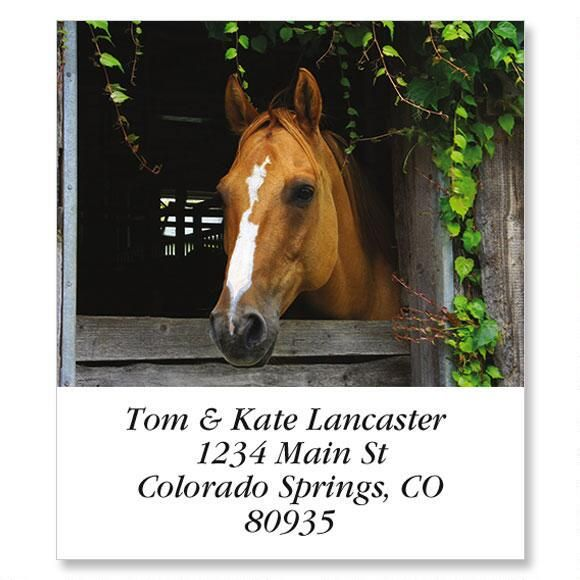 Horse In Barn Select Address Labels