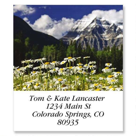 Mount Robson Daisies Select Address Labels