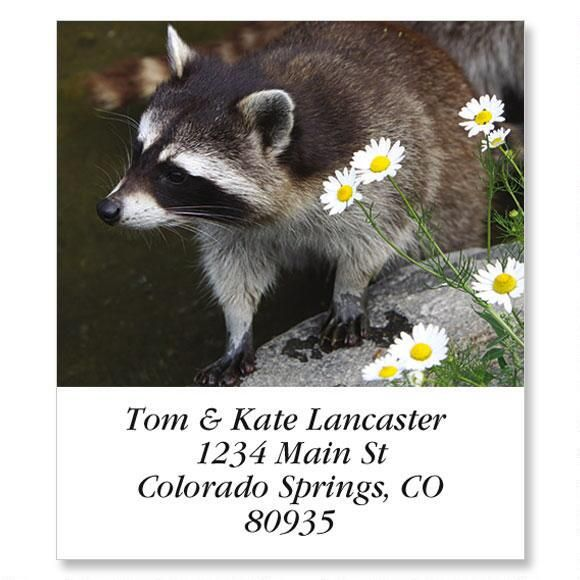 Raccoon Select Return Address Labels