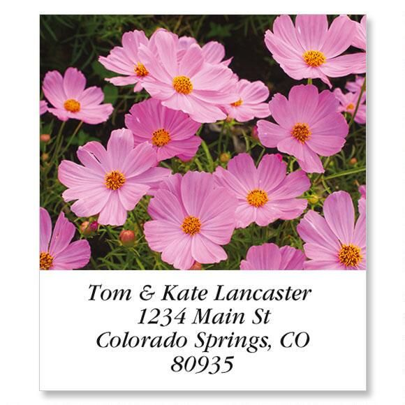 Pink Cosmos Select Return Address Labels