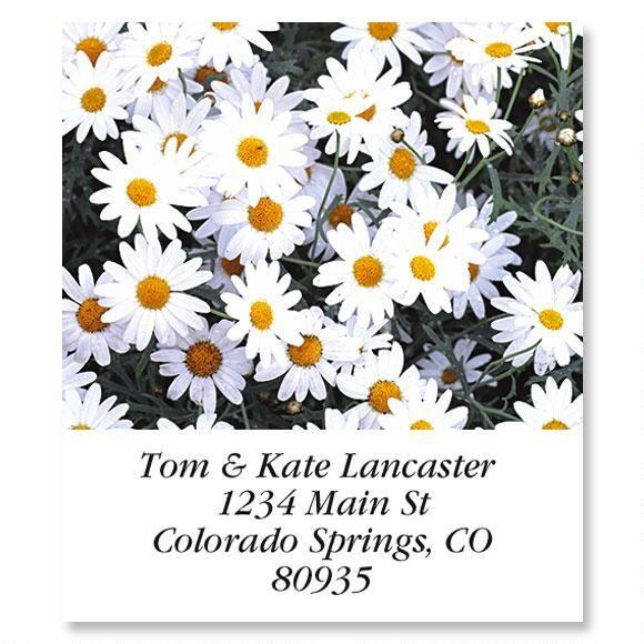 Daisies Select Address Labels