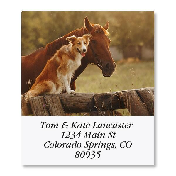 Morning Select Address Labels