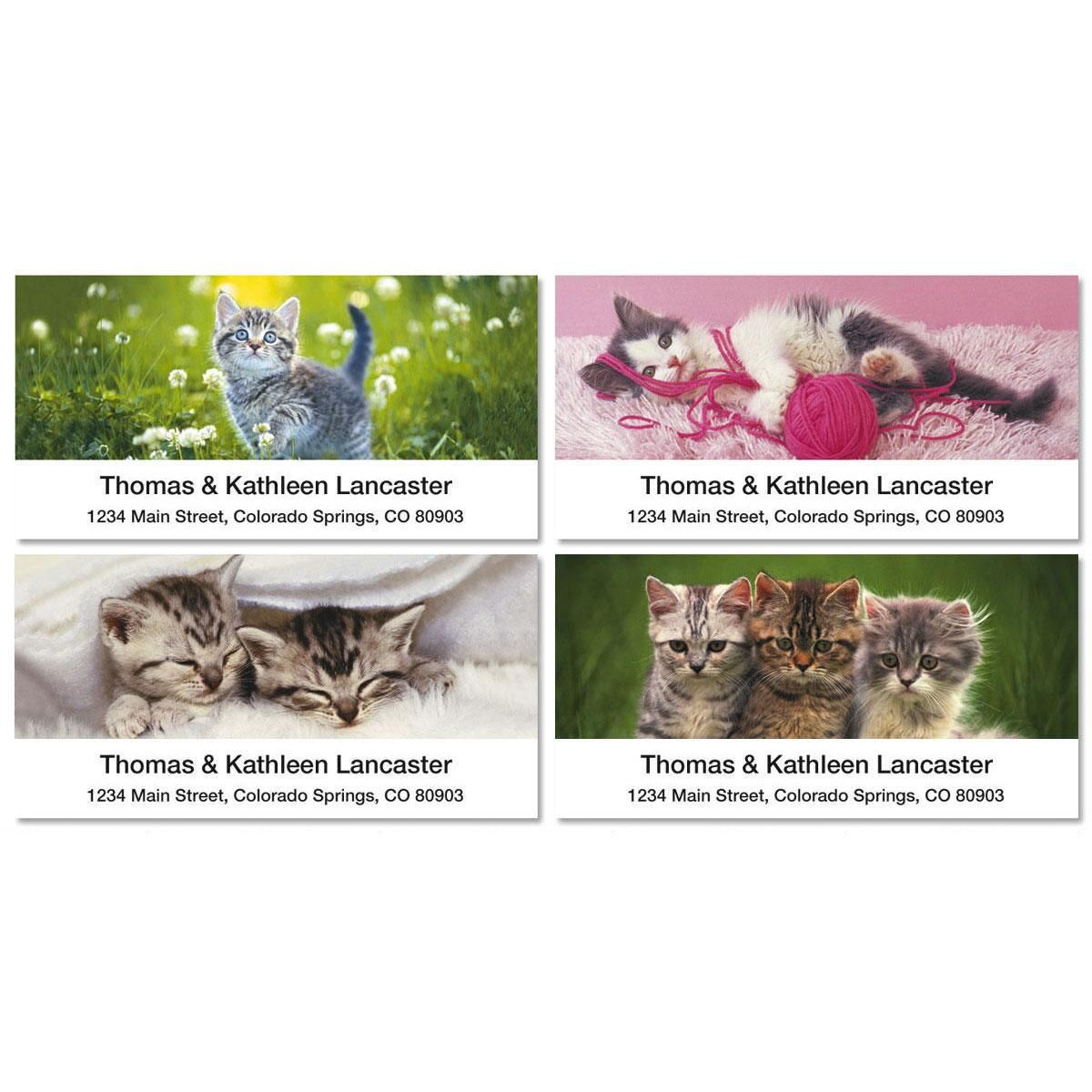 Cuddly Kittens Deluxe Return Address Labels  (4 Designs)