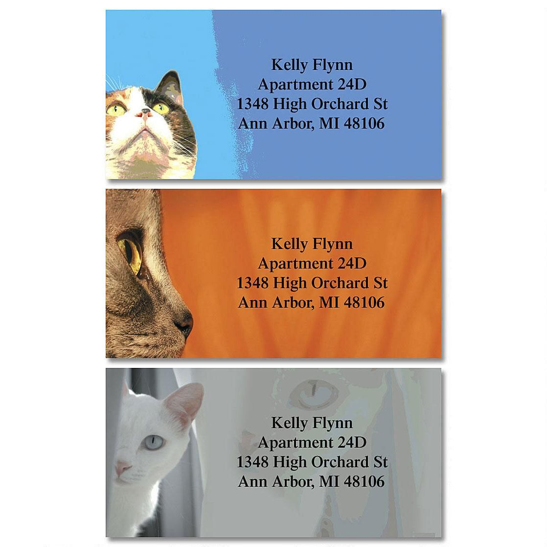 Faces of Cats Border Return Address Labels  (3 Designs)