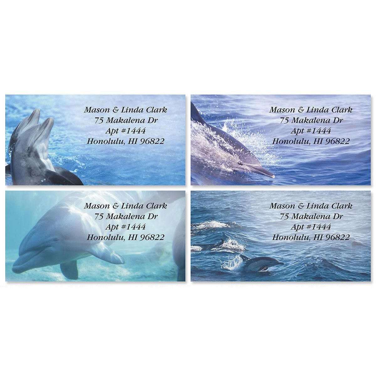 Dolphins at Play Border Return Address Labels  (4 Designs)