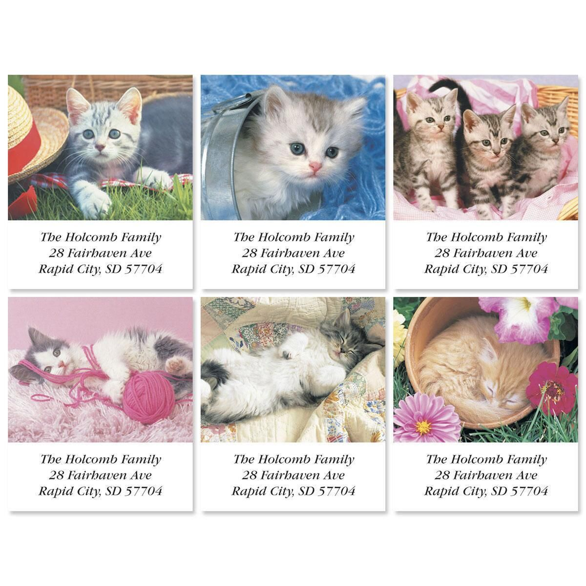 Kitty Kapers Select Address Labels  (6 Designs)