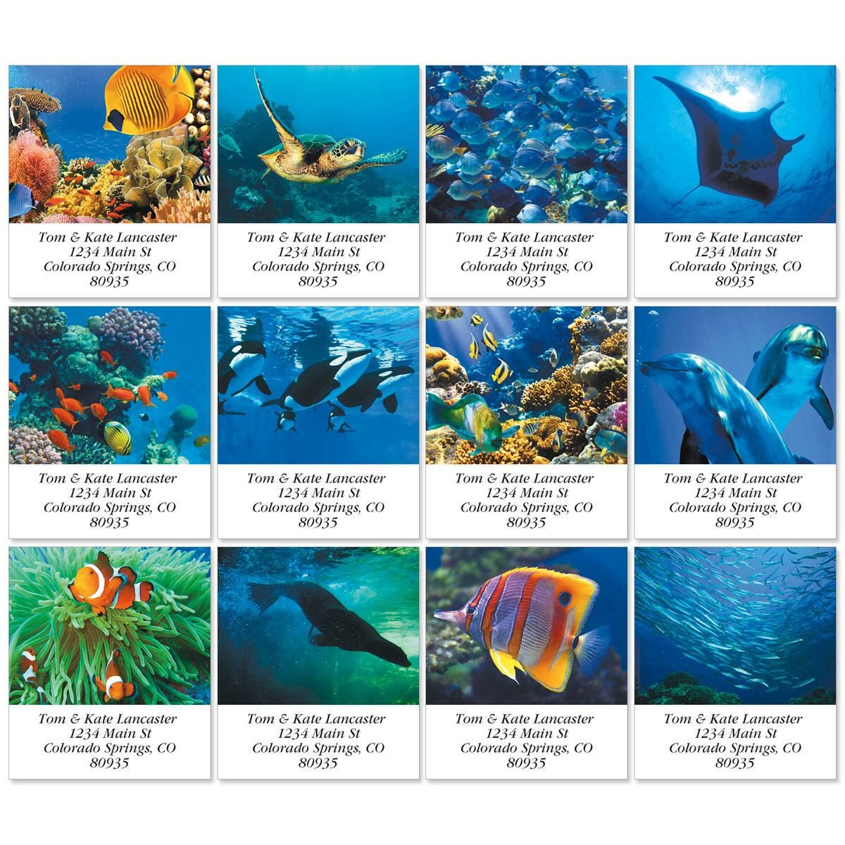 Undersea Select Address Labels  (12 Designs)