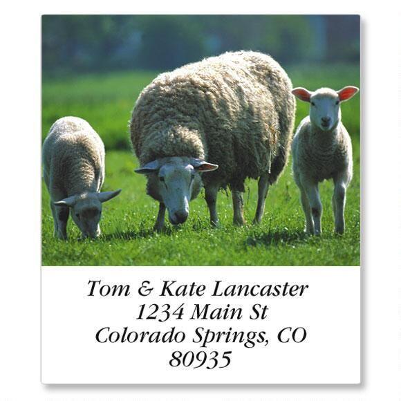 Barnyard Animals Select Address Labels  (24 Designs)