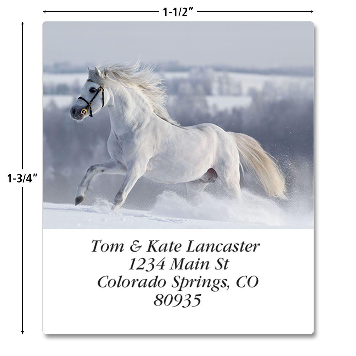 For Horse Lovers Select Return Address Labels  (12 Designs)