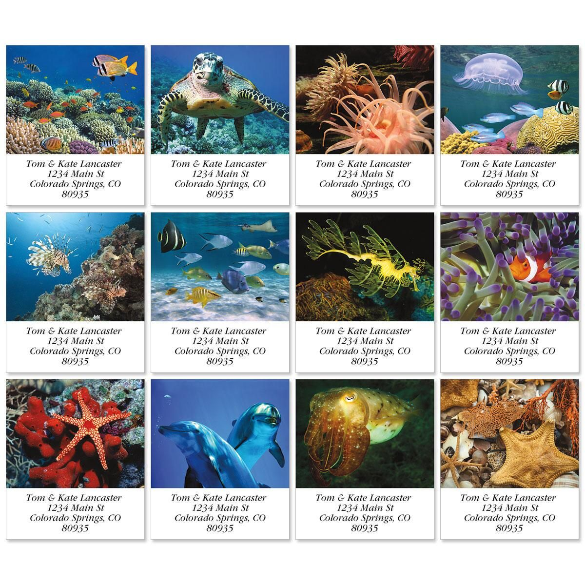 Jewels Of The Sea Select Return Address Labels  (12 Designs)