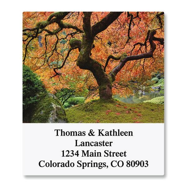 Into the Trees Select Address Labels  (6 Designs)