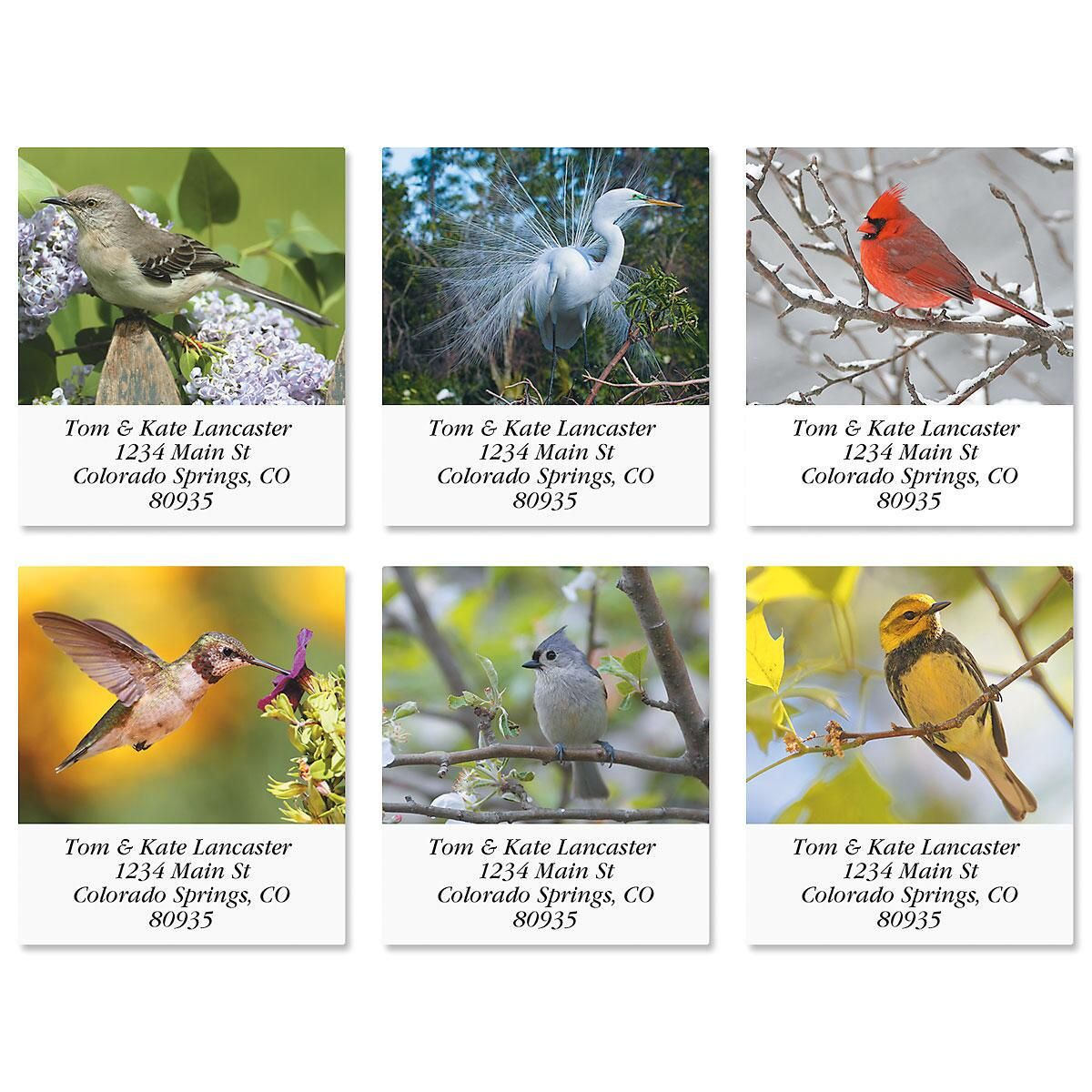 Bird Lover Select Return Address Labels  (6 Designs)