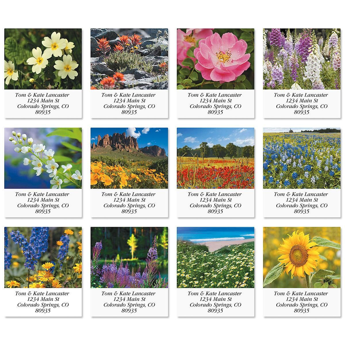 Natures Wildflowers Select Return Address Labels  (12 Designs)