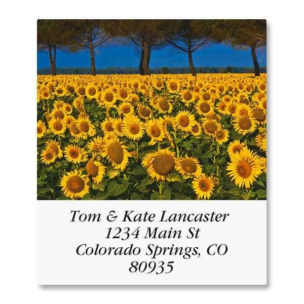 Sunny Sunflowers Select Return Address Labels  (6 Designs)