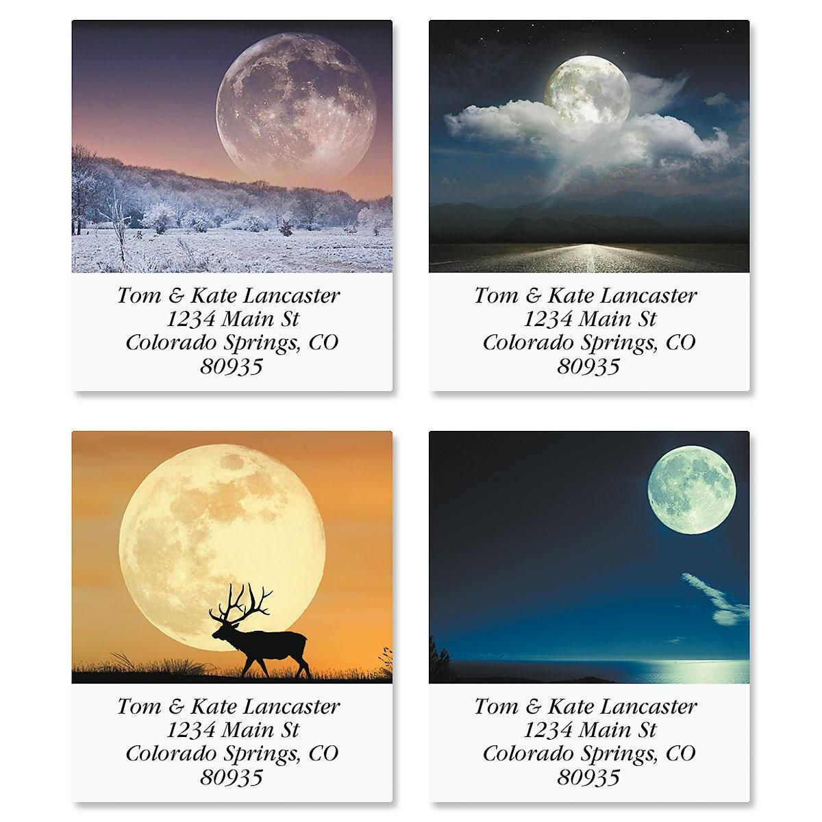 Moonscapes Select Address Labels  (4 Designs)