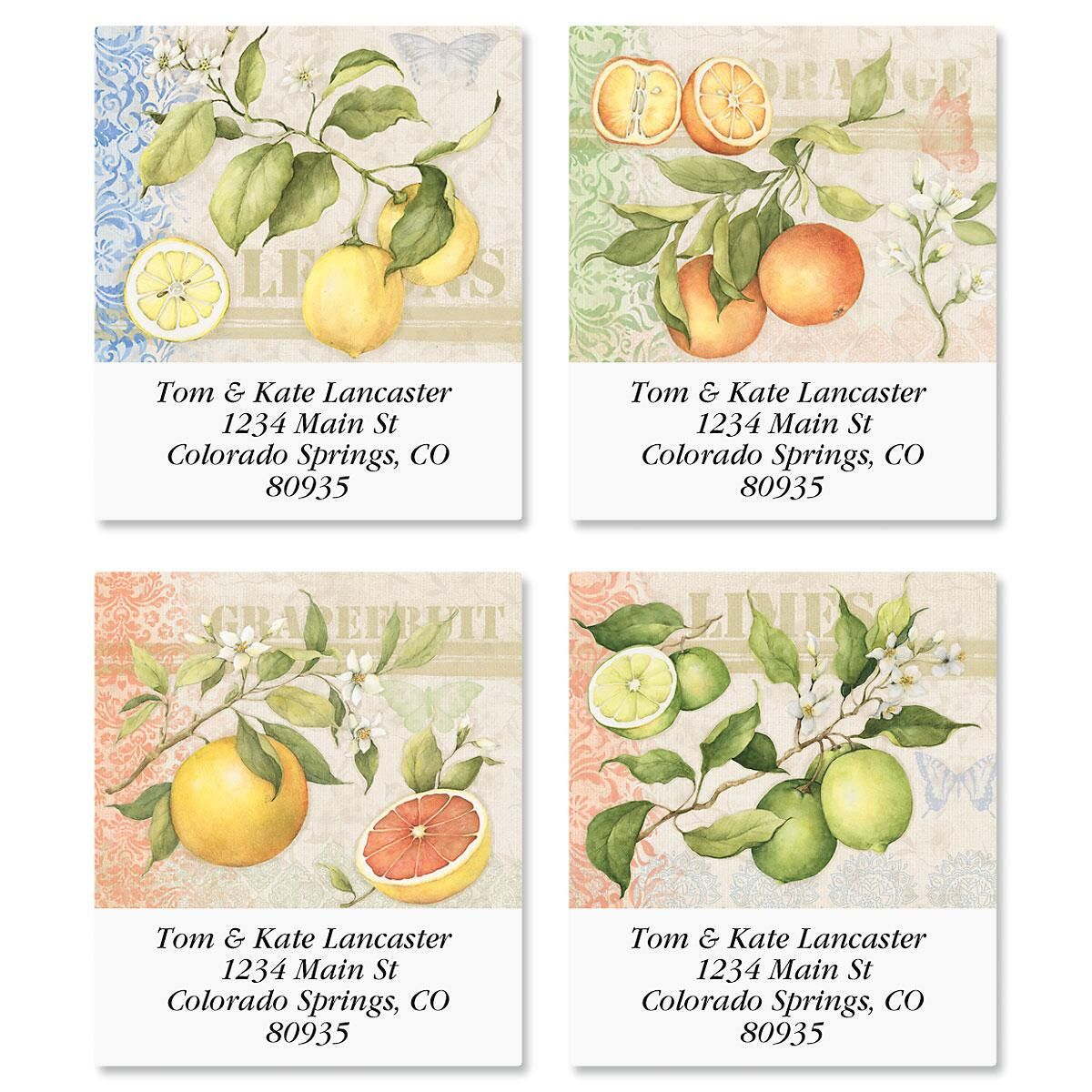 Citrus Select Return Address Labels  (4 Designs)