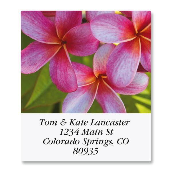 Floral Fantasy Select Return Address Labels  (8 Designs)