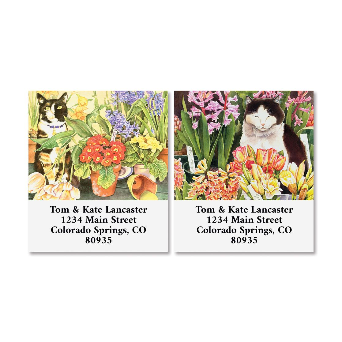 Garden Cats Select Return Address Labels (2 Designs)