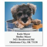 Dog Gone Cute Select Address Labels