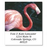 North American Wildlife Select Address Labels  (24 Designs)